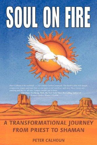 Download Soul on Fire