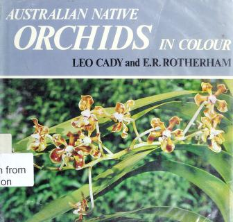 Cover of: Australian native orchids in colour | Leo Cady
