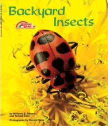 Backyard Insects by Millicent E. Selsam, Ronald Goor